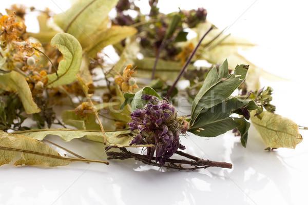 Chá medicinal secar isolado branco médico saúde Foto stock © gitusik