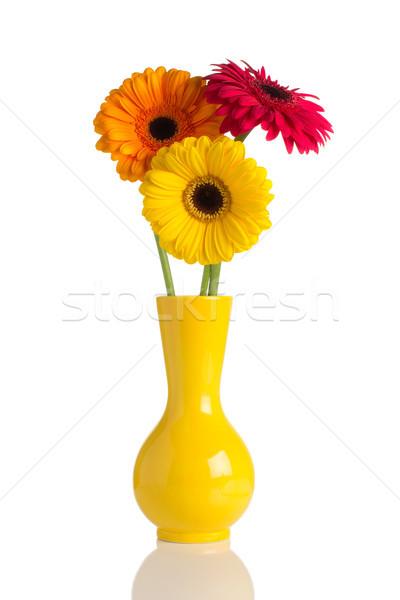 Blumen Vase isoliert weiß Frühling Design Stock foto © gitusik