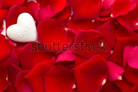 Rozenblaadjes steen harten abstract natuur hart Stockfoto © gitusik