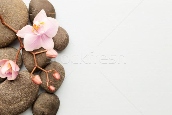 スパ 石 木製 蘭 抽象的な 健康 ストックフォト © gitusik