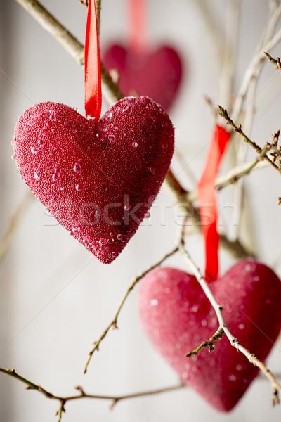 Serca czerwony serca wiszący karty Zdjęcia stock © gitusik