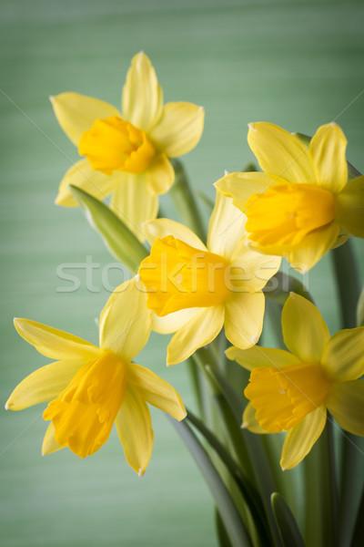 水仙 黄色 イースター グリーティングカード 花 ストックフォト © gitusik