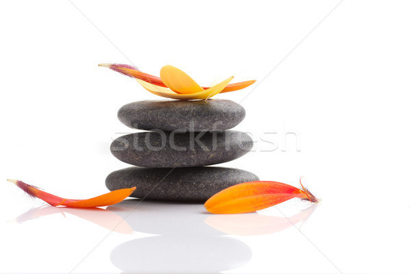 Foto stock: Spa · piedras · naranja · hoja · aislado · blanco
