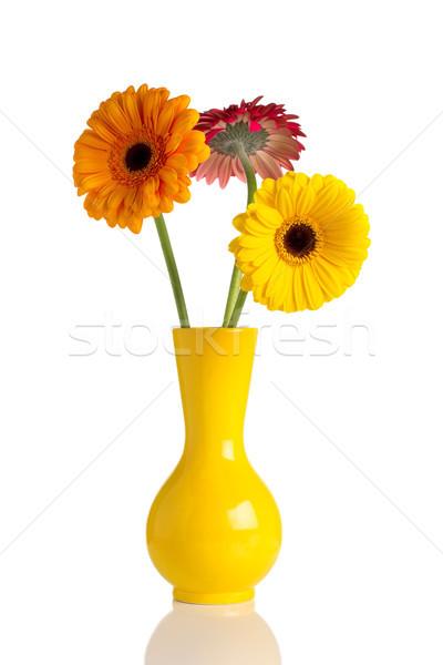 Flowers and vase. Stock photo © gitusik