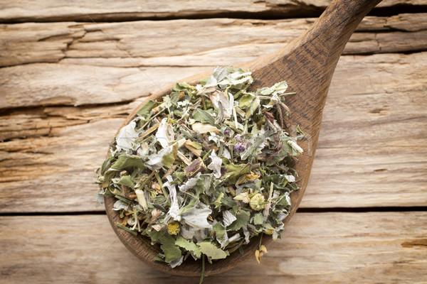 Tea alternatív gyógymód szárított növénygyűjtemény homeopatikus alternatív gyógynövény Stock fotó © gitusik