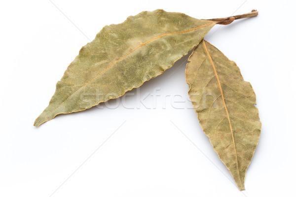 Aromático hojas blanco grupo macro especias Foto stock © gitusik
