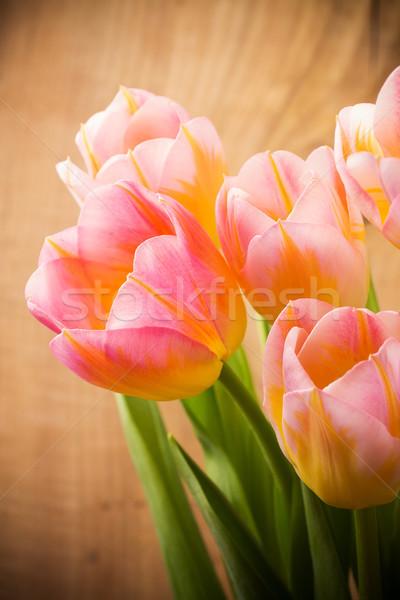 Tulipánok virágmintás virágok tavasz levél szépség Stock fotó © gitusik