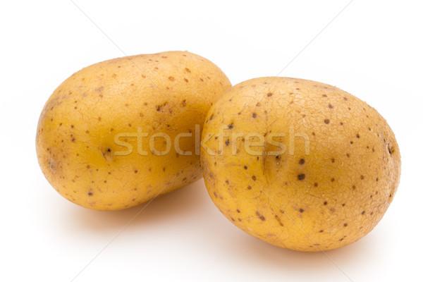 Raw potato isolated on white background. Stock photo © gitusik