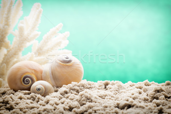 Underwater scene.  Stock photo © gitusik