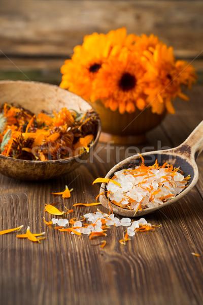 Homeopatycznych muzyka wyschnięcia kwiaty powierzchnia Zdjęcia stock © gitusik