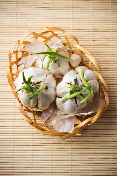 Garlic. Stock photo © gitusik