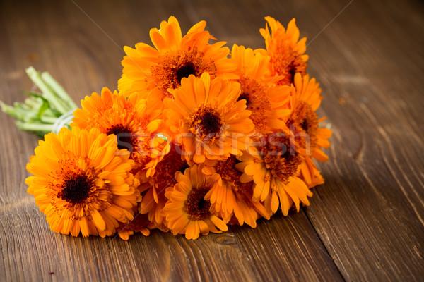 Homeopáticos medicina secar flores superfície Foto stock © gitusik