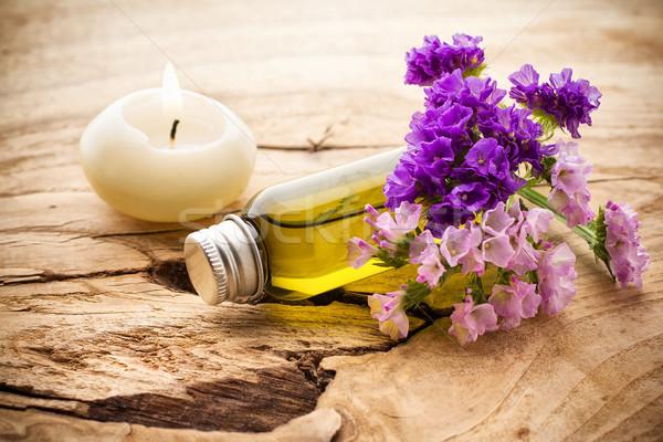 Aromaterapi vücut yağ doğa yaprak sağlık Stok fotoğraf © gitusik
