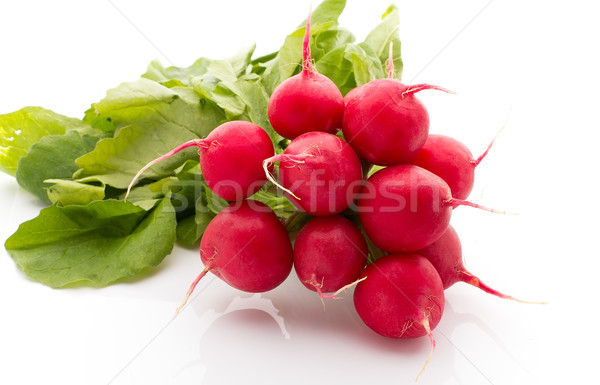 Radish. Stock photo © gitusik