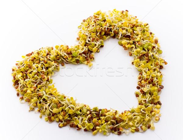 свежие люцерна редис белый формы сердца продовольствие Сток-фото © gitusik