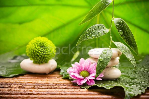 Foto stock: Tratamiento · de · spa · spa · piedras · hojas · verdes · flor · tropicales