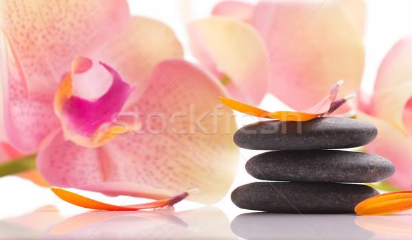 Spa kamienie pomarańczowy liści odizolowany biały Zdjęcia stock © gitusik