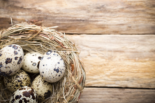 Quail eggs. Easter greeting card. Stock photo © gitusik