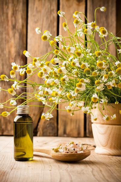 カモミール 花 木製 表面 アロマセラピー 油 ストックフォト © gitusik