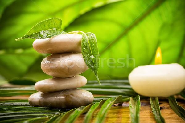 Foto d'archivio: Pietre · equilibrata · spa · foglie · verdi · abstract · foglia