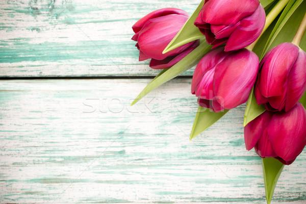 Tulipán fából készült húsvét virágok levél háttér Stock fotó © gitusik