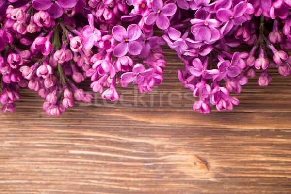 Lilac. Stock photo © gitusik