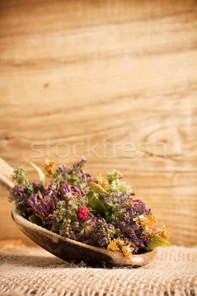 Bitkisel çaylar kuru tıbbi sağlık yeşil Stok fotoğraf © gitusik