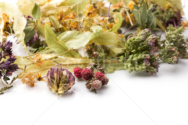 Bitkisel çaylar kuru yalıtılmış beyaz tıbbi sağlık Stok fotoğraf © gitusik