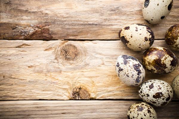 Quail eggs. Easter greeting card. Imagine de stoc © gitusik