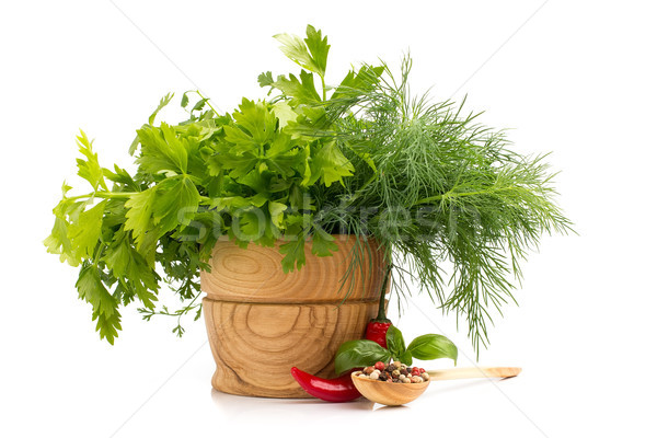 świeże przyprawy zioła pietruszka odizolowany biały Zdjęcia stock © gitusik