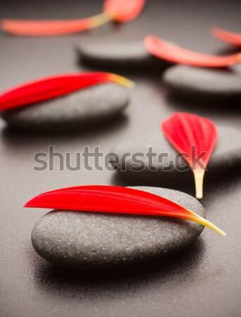 石 スパ 黒 赤 抽象的な 葉 ストックフォト © gitusik