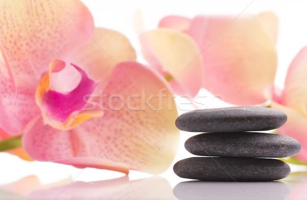 Estância termal pedras rosa orquídea flor isolado Foto stock © gitusik