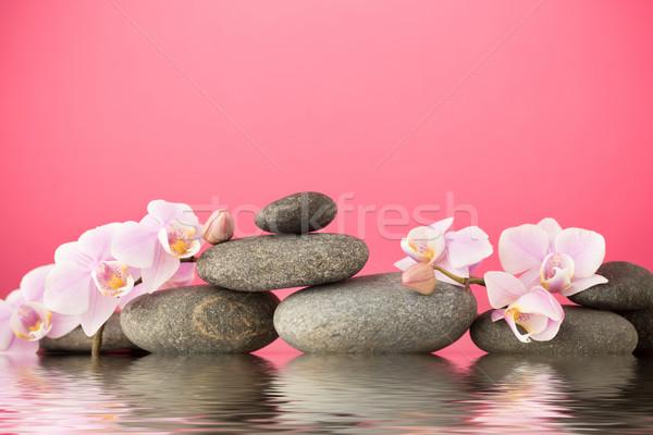 Orquídea estância termal pedras rosa orquídeas abstrato Foto stock © gitusik