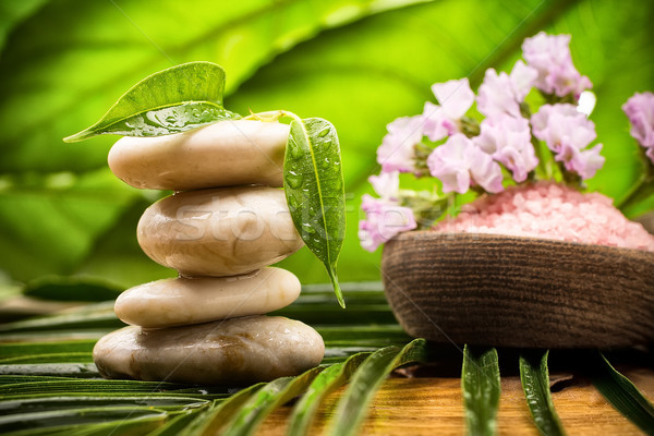 Foto stock: Estância · termal · pedras · equilibrado · folhas · verdes · abstrato · folha