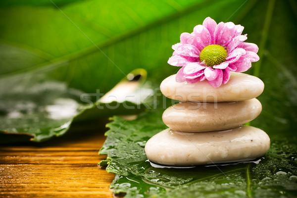 Leczenie uzdrowiskowe spa kamienie zielone liście kwiat tropikalnych Zdjęcia stock © gitusik