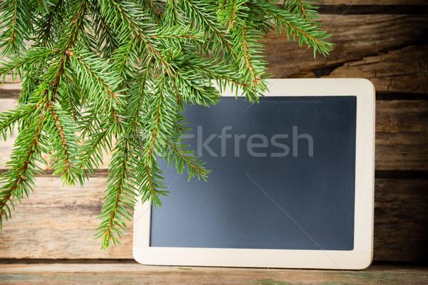 Spruce background. Stock photo © gitusik