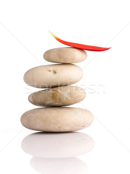 Spa kamienie czerwony płatki odizolowany biały Zdjęcia stock © gitusik