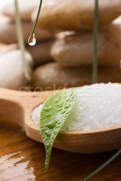 Zeezout groen blad spa stenen druppels Stockfoto © gitusik