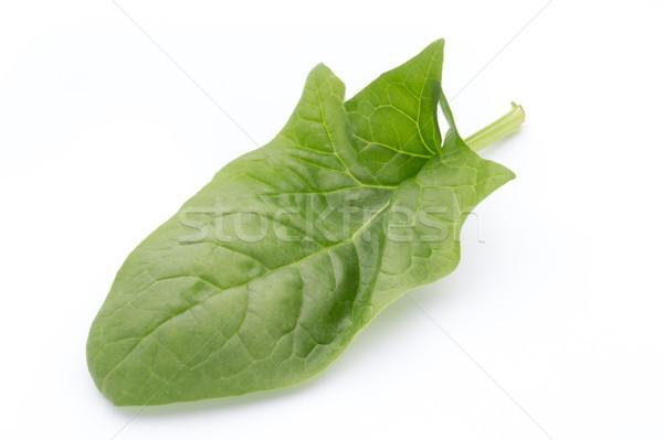 Fresche foglie spinaci bianco foglie verdi isolato Foto d'archivio © gitusik