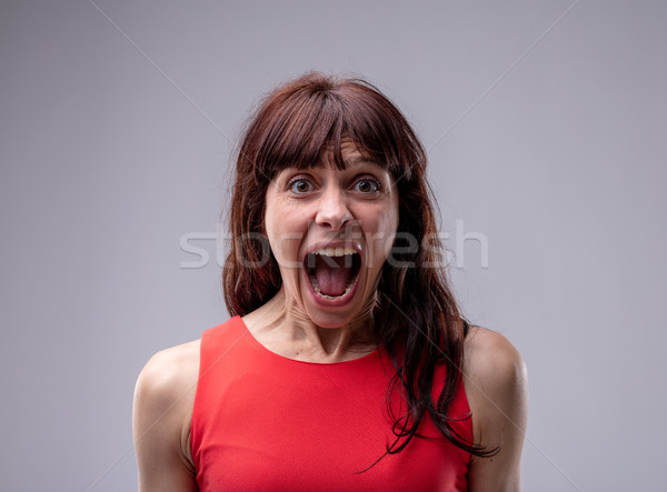 Excited exuberant woman standing screaming Stock photo © Giulio_Fornasar
