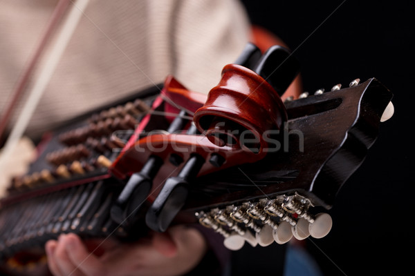 nyckelharpa's scroll detail of its headstock Stock photo © Giulio_Fornasar