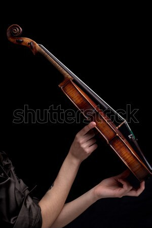 side view of a baroque violin on black Stock photo © Giulio_Fornasar