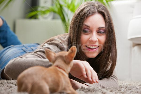 Stockfoto: Jonge · mooie · vrouw · liefhebbend · puppy · woonkamer · paar