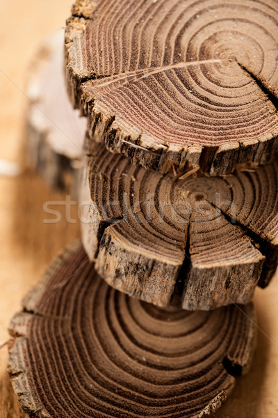 detail of a log pile in shallow depth of field Stock photo © Giulio_Fornasar