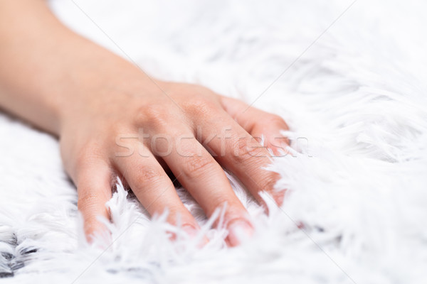 hand on a furry blanket Stock photo © Giulio_Fornasar