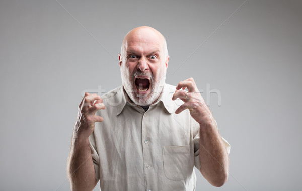 angry old man getting crazy or a wolf Stock photo © Giulio_Fornasar