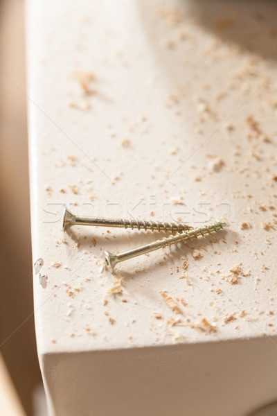screws among the sawdust in a carpenter workshop Stock photo © Giulio_Fornasar