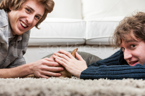 Two young men caressing a little chihuahua Stock photo © Giulio_Fornasar