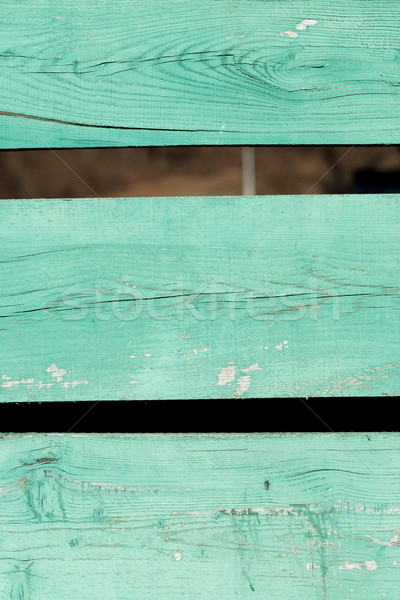green wood of grain and knots detail closeup Stock photo © Giulio_Fornasar
