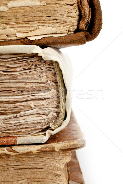 old books spines Stock photo © Giulio_Fornasar